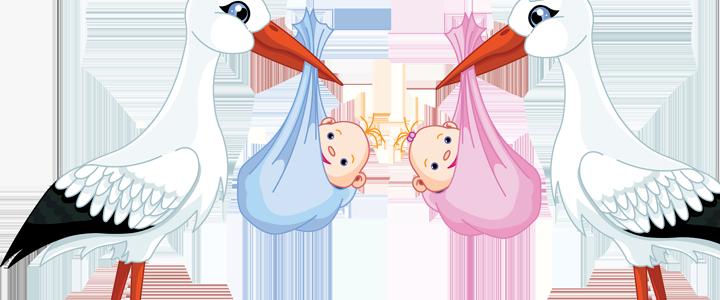 lista de nacimiento del bebe