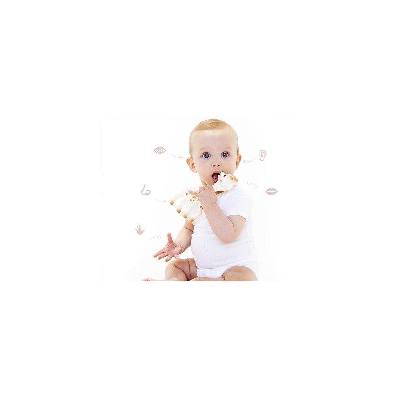 Mordedores para bebes - Ideal para cuando empiezan a salir los dientes